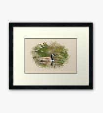 Canada Goose Watercolor Framed Print