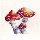 Magic Mushrooms by Ela Steel
