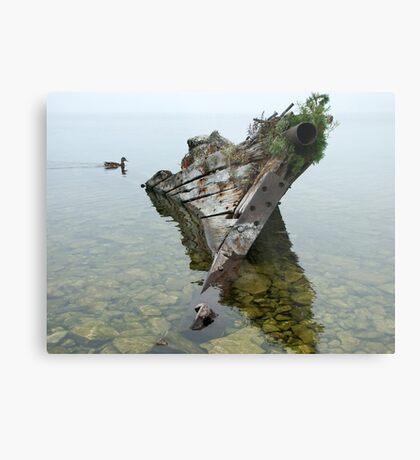 Tobermory shipwreck Metal Print