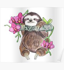 Happy Sloth with orchids Poster