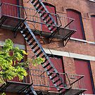 Abandoned Building in Bed-Stuy by henuly1