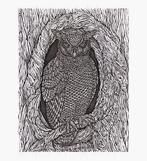 Great Horned Night Owl Hand-drawn Photographic Print