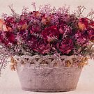 Pink Dried Roses Floral Arrangement by Sandra Foster
