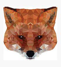 fox. polygonal graphics Photographic Print
