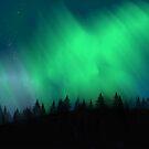 Northern lights  by jenteva
