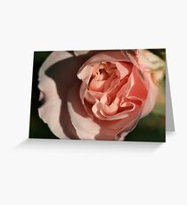 Nature Unfolding Greeting Card