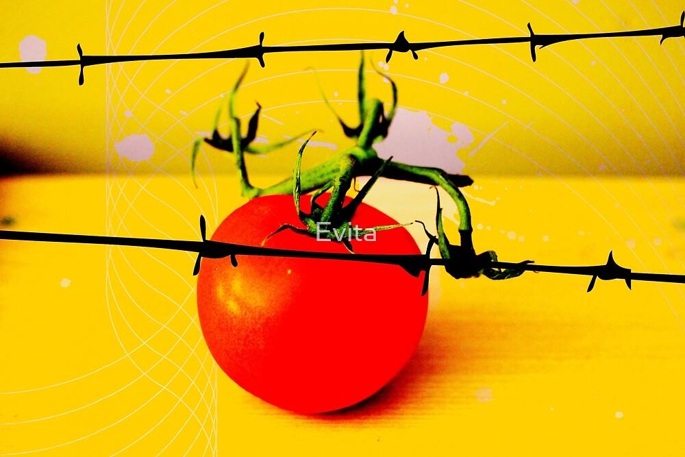 Tomate von Evita