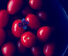 cherry tomatoes by Ingrid Beddoes