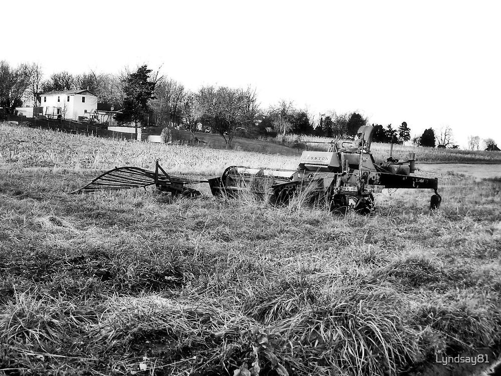 Old Farm Equipment  by Lyndsay81