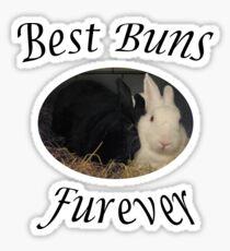 Best Bunnies furever Sticker