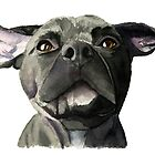 Black Pit Bull Dog with Wiggly Ears Watercolor by namibear