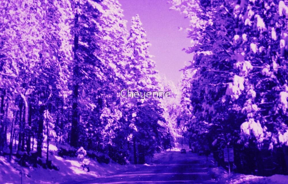 Purple Forest by Cheyenne