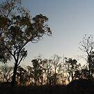 Bush Sunset by HannahKate