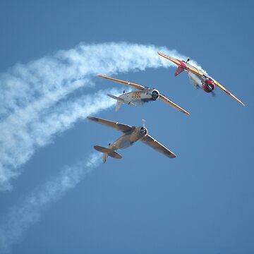 Southern Knights - Looping, Avalon Airshow 2007 by muz2142