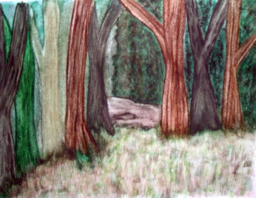 The Path by jillpedersen