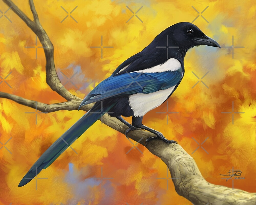 Autumn Magpie by Jeff Powers Illustration