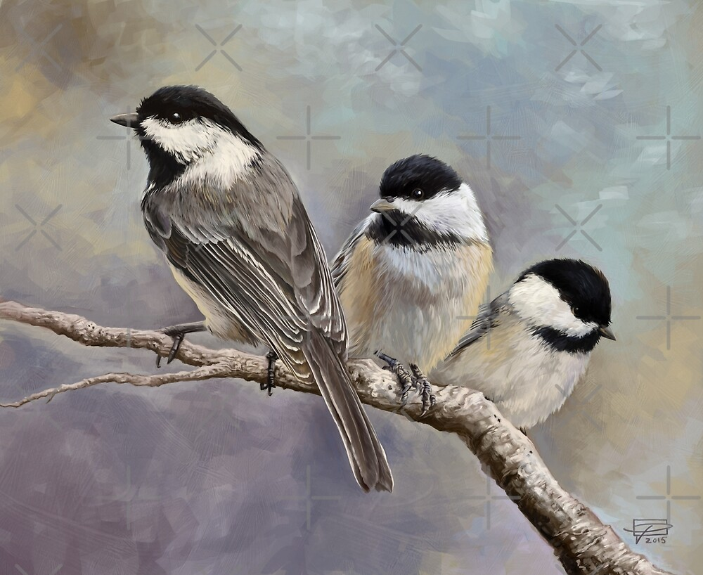 Three Little Chickadees by Jeff Powers Illustration