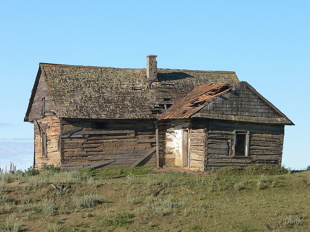 Old Ukrainian homestead by Darbs