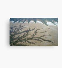 Tidal Creeks  Canvas Print