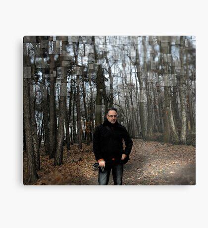 Belgium Forest Metal Print