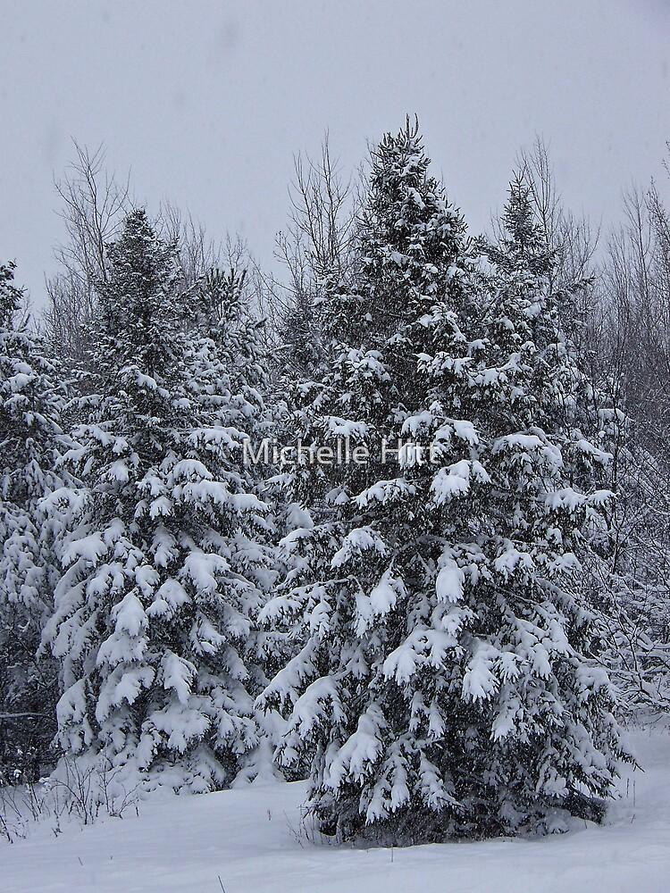 Winter Wonderland by Michelle Hitt