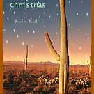 Christmas in the Desert by Barbara Manis