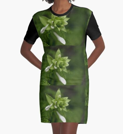 A Little Green and White Graphic T-Shirt Dress