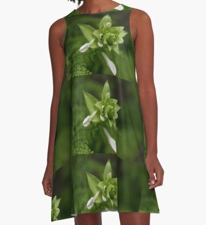 A Little Green and White A-Line Dress