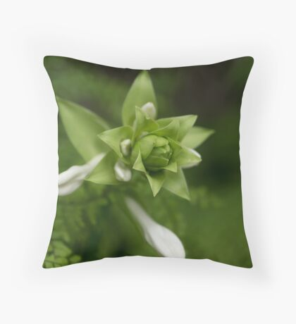 A Little Green and White Throw Pillow