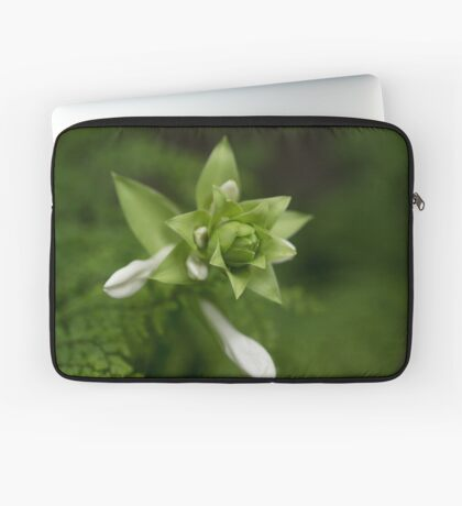 A Little Green and White Laptop Sleeve
