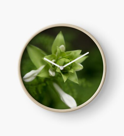 A Little Green and White Clock
