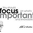 focus is important - warren buffett by razvandrc