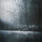 Drowning by Dirk Wuestenhagen