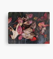 Collage Of Autumn Red Metal Print