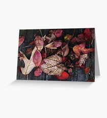 Collage Of Autumn Red Greeting Card