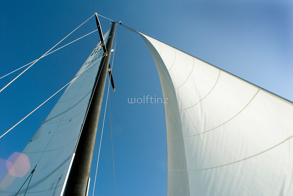 All I ask is a tall Ship and a star to steer her by by wolftinz