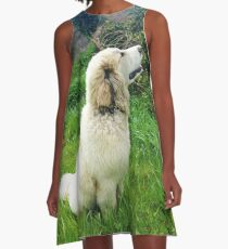 Dream Big - Great Pyrenees Puppy A-Line Dress