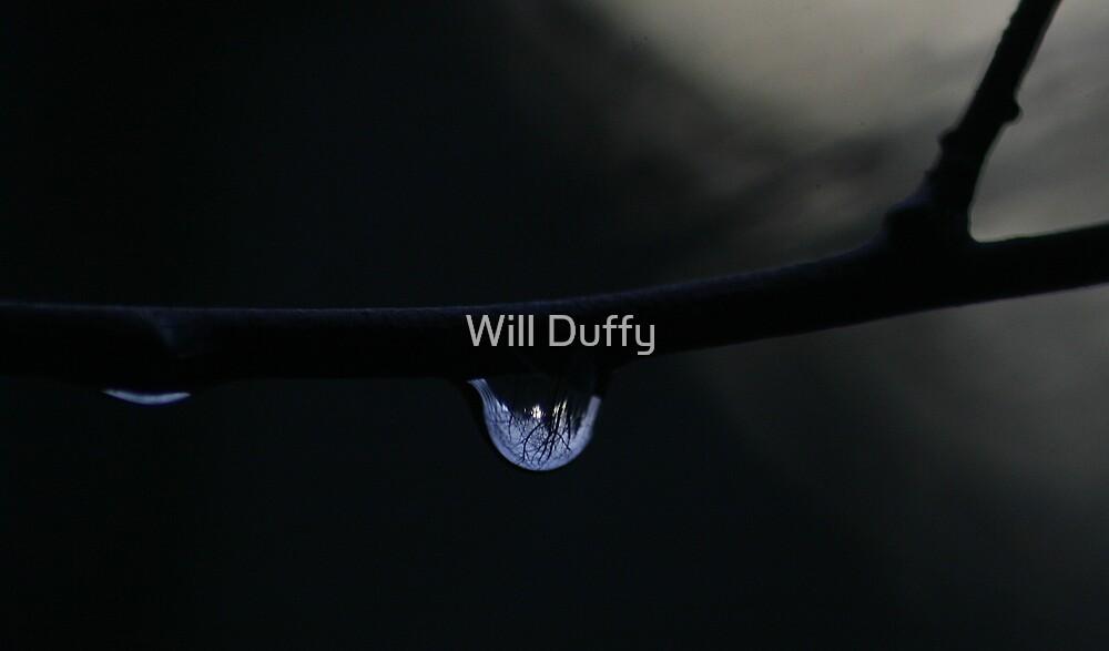 snow globe by Will Duffy