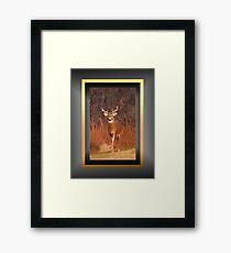"""""""Hey, remember me?!"""" - for Eyal :) (framed for wall art/prints) Framed Print"""