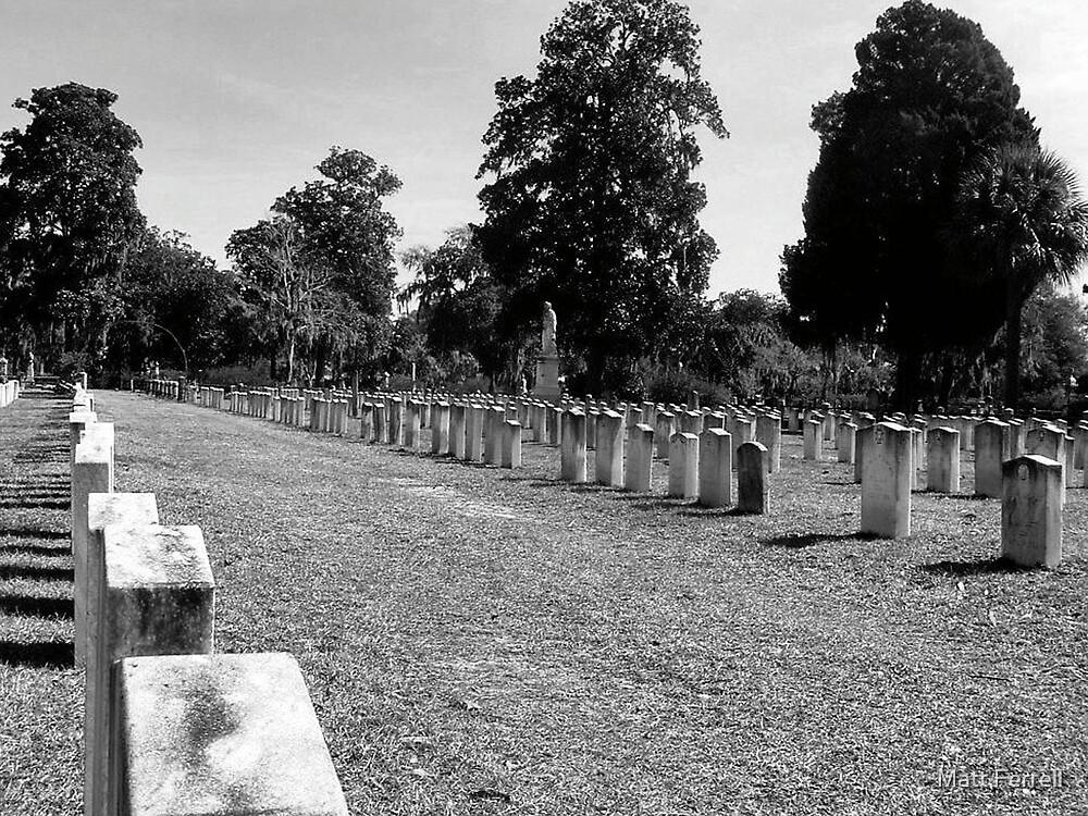 Savannah Cemetery by Matt Ferrell