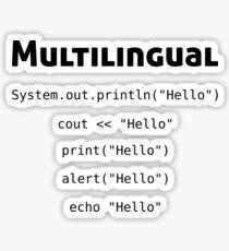 Pegatina Codificador multilingüe - Regalos para informática