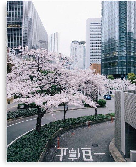 Tokyo by laureum