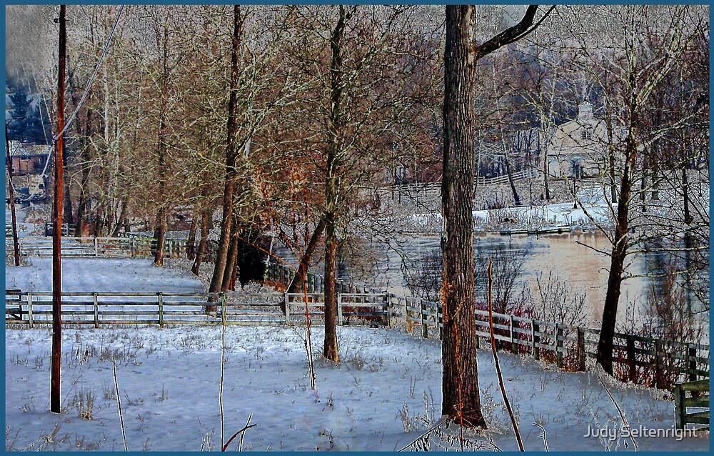 Frozen Silence by Judy Seltenright