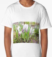 Wet flowers of crocuses. Long T-Shirt