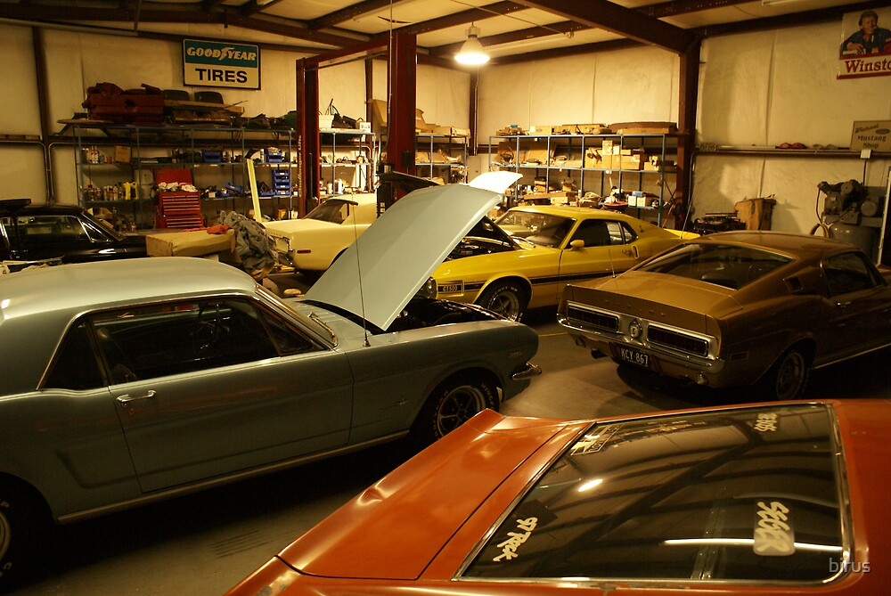 the mustang shop by birus