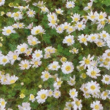 Daisies In Spring by taiche