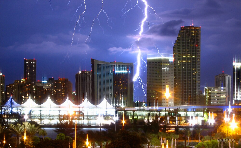 Miami Lightning by marinus
