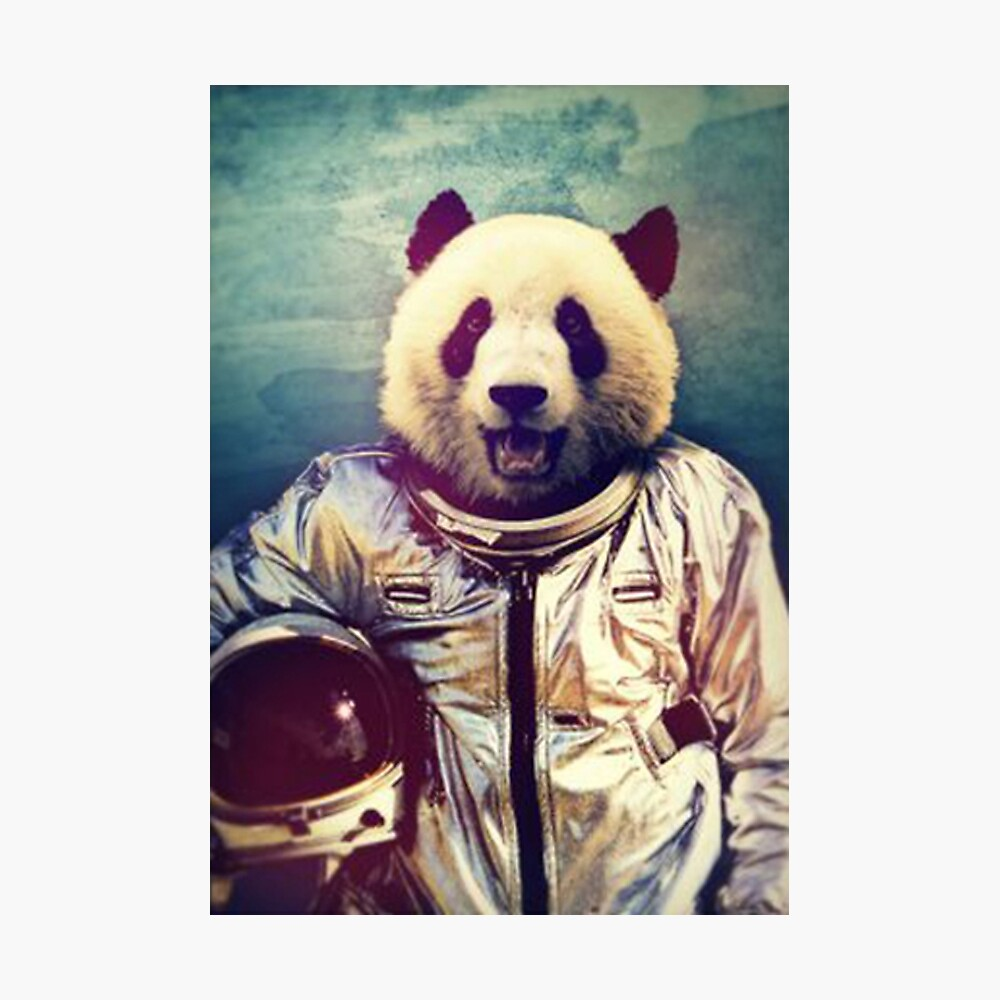 Astronaut panda Photographic Print