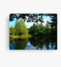 Lawns Woods Lake  Canvas Print