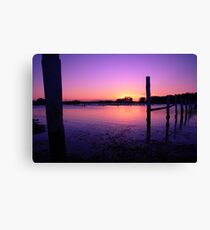 Forster Canvas Print